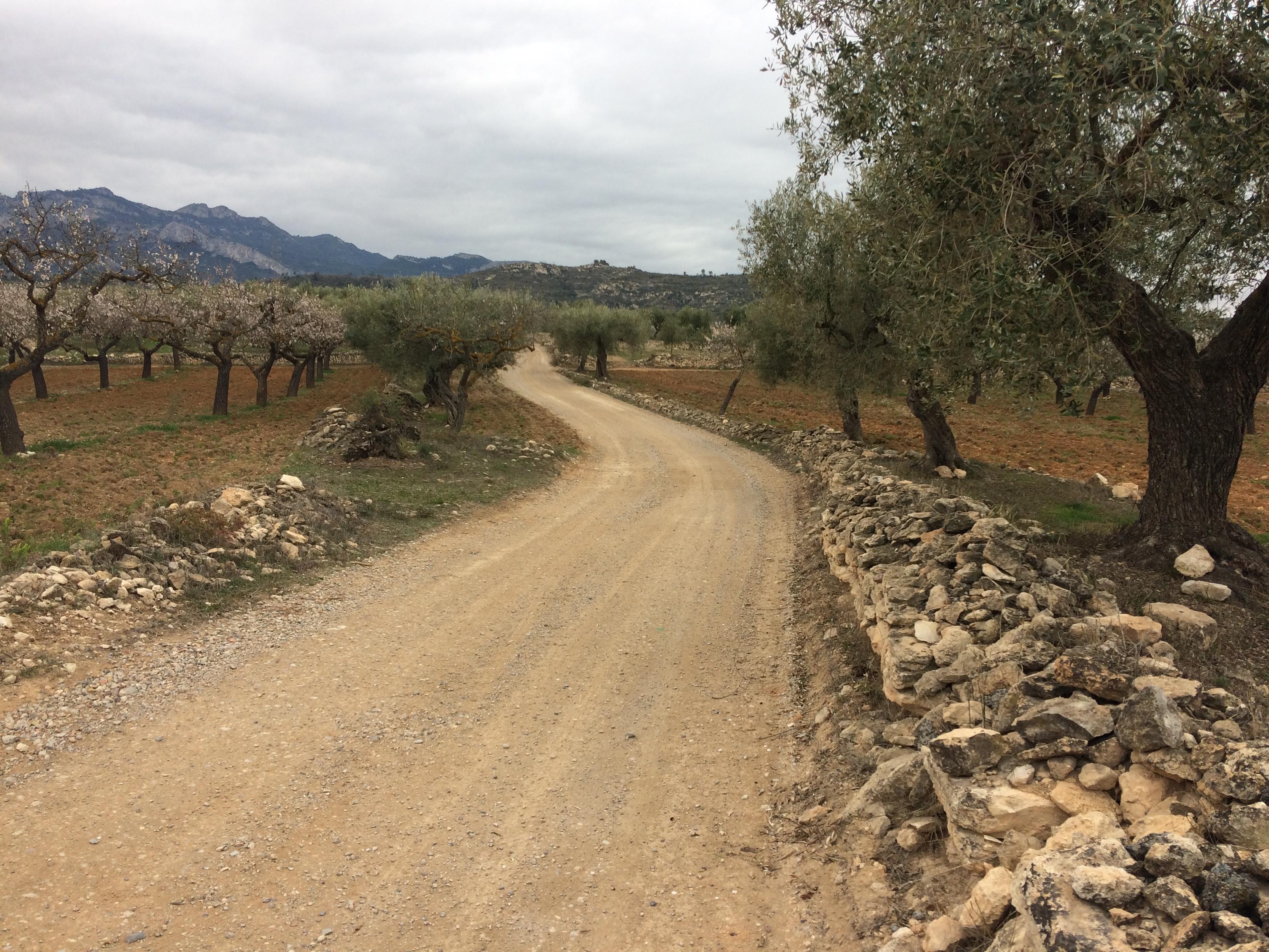 Subvenció del Consell Comarcal de la Ribera d'Ebre